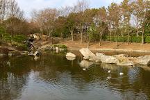 Sarue Onshi Park, Koto, Japan
