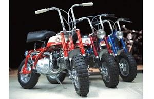 Monkey Bike Repairs