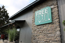 Free Run Cellars, Berrien Springs, United States