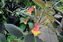 96 Orchid Garden, Belmopan, Belize