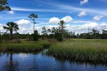 Castaway Island Preserve, Jacksonville, United States