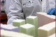 Aulina S.r.l., Racconigi, Italy