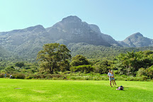 Kirstenbosch National Botanical Garden, Newlands, South Africa