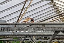 Vlinders aan de Vliet, Leidschendam, The Netherlands