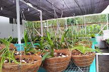 MiniZoo y Jardin Yori, Horquetas, Costa Rica