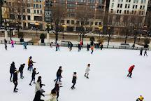 McCormick Tribune Ice Rink, Chicago, United States
