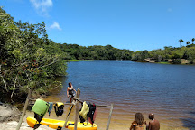 Reserva de Sapiranga, Praia do Forte, Brazil