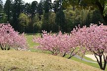 Glenn Oaks Country Club, Katori, Japan