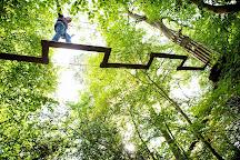 Go Ape Zipline & Adventure Park, Rockville, United States