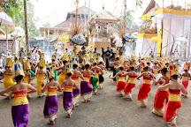 Hire Bali Driver, Ubud, Indonesia