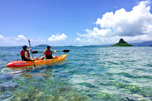 Active Oahu Tours, Laie, United States