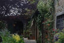 La Casa di Bricciano - Azienda Agricola Biologica - Organic winery, Gaiole in Chianti, Italy