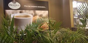 DECATTA café 1