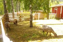 Niitty-seppala's Farm, Palkane, Finland