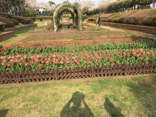 The Best Attractions In Ageo Destimap Destinations On Map