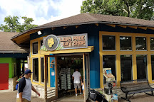 San Antonio Zoo, San Antonio, United States