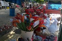 Langenhoven Park Farmers Market, Bloemfontein, South Africa