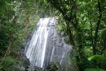 Bosque Nacional El Yunque, Puerto Rico