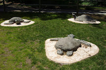 Ravenna Park, Seattle, United States
