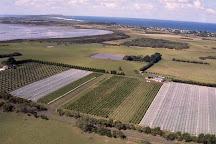 Purple Hen Winery, Cowes, Australia