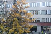 Kipsala, Riga, Latvia