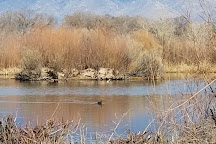 Rio Grande Nature Center State Park, Albuquerque, United States
