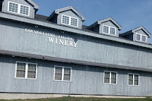 Connecticut Valley Winery, New Hartford, United States
