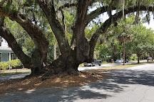 Lover's Oak, Brunswick, United States