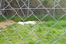 Zoo d'asson, Asson, France