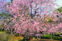 Soka Park, Soka, Japan