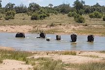 Adventures with Elephants, Bela Bela, South Africa
