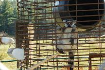 Aloha Safari Zoo, Cameron, United States