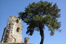 Tour Anne de Bretagne, Montfort-l'Amaury, France