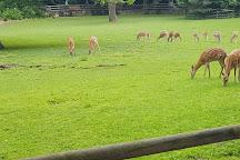 Nuremberg Zoo, Nuremberg, Germany