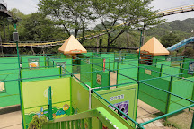 Japan Monkey Park, Inuyama, Japan