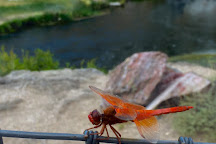 Hot Creek, Mammoth Lakes, United States