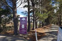 Cherry Tree Hill Vineyard, Sutton Forest, Australia