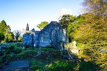 Muckross Abbey, Killarney, Ireland