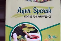 Ayur Sparsh, Kumily, India