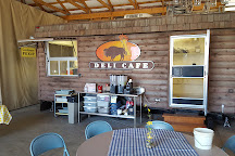 Cook's Bison Ranch, Wolcottville, United States