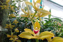 Eric Young Orchid Foundation, Trinity, United Kingdom