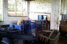 Fairview Coffee Estate, Nairobi, Kenya