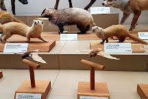 Miyazaki Prefectural Museum of Nature and History, Miyazaki, Japan