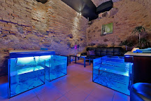 Fish Spa Vilnius, Vilnius, Lithuania