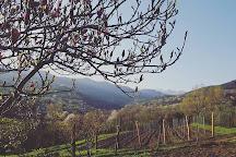Giro di Vite, Pinerolo, Italy