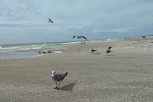 Turtle Beach, Siesta Key, United States