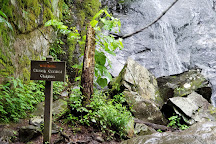 Hen Wallow Water Falls, Great Smoky Mountains National Park, United States