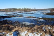 Pecks Pond, Pennsylvania, United States