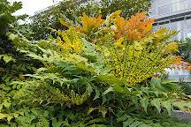 jardin japonais le havre france - Jardin Japonais Le Havre
