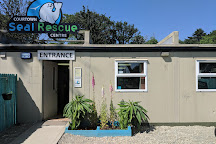 Seal Rescue Ireland, Courtown, Ireland